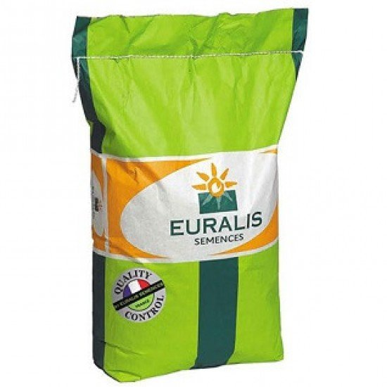 ЕС Ароматик SU Euralis (под Гранстар), семена подсолнечника Aromatic SU Евралис