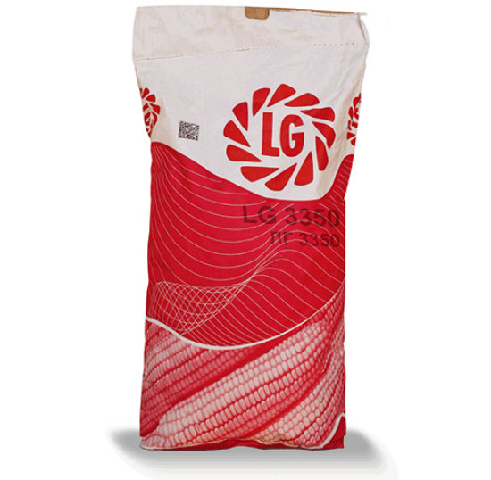 LG 3350, ФАО 350, семена кукурузы Limagrain (Лимагрейн)