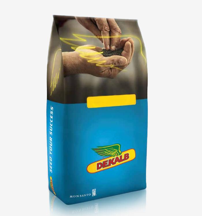 Ексторм ДК насіння озимого ріпак Monsanto (Монсанто)