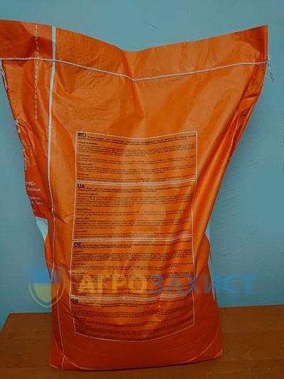 Лауро, ФАО 330, семена кукурузы KWS (КВС)