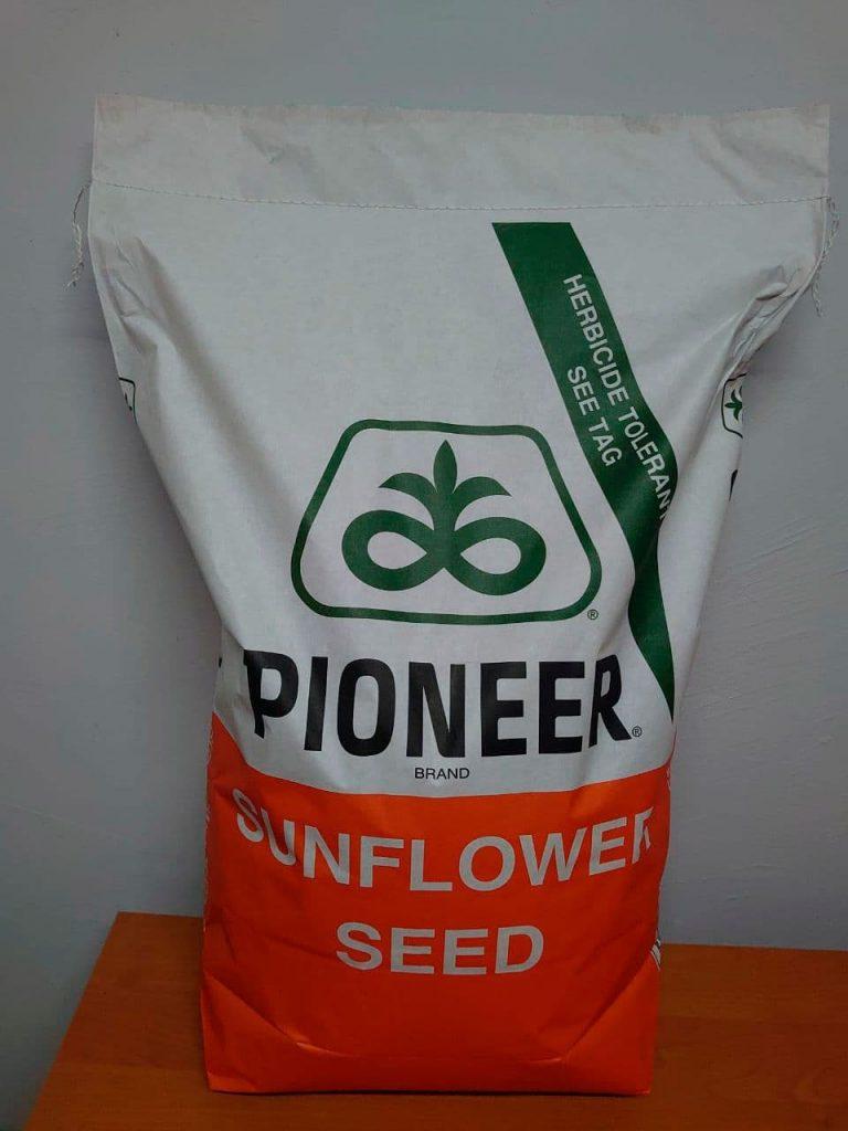 П64ГГ142 Pioneer (Классический), семена подсолнечника P64HH142 Пионер