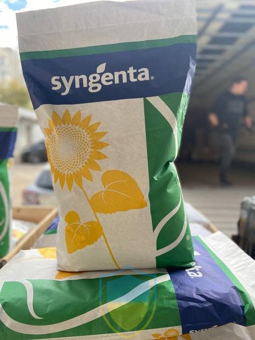 СИ Кадикс Syngenta (Классический), семена подсолнечника SY Cadix Сингента